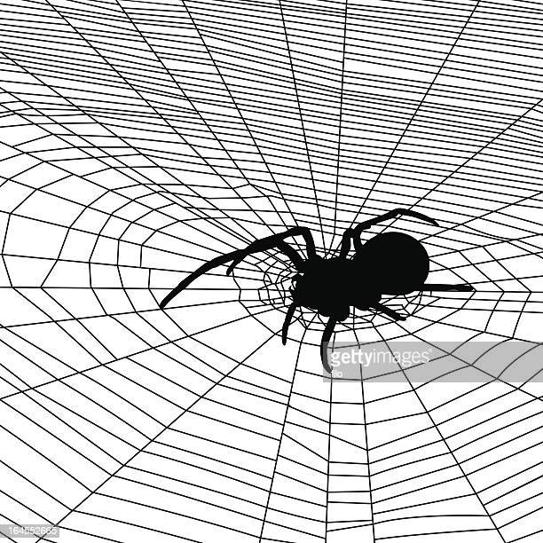 spider web background - black widow spider stock illustrations, clip art, cartoons, & icons