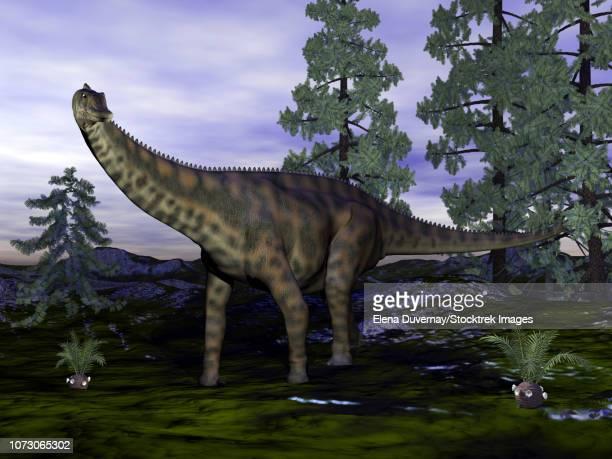 Spinophorosaurus dinosaur next to Wollemia pine trees.