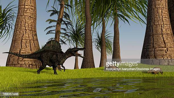 spinosaurus hunting along the edge of a swamp while a pair of eurohippus graze nearby. - animal spine stock illustrations, clip art, cartoons, & icons