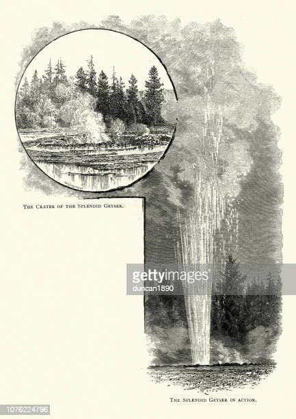 splendid geyser yellowstone, 19th century - volcanic crater stock illustrations, clip art, cartoons, & icons