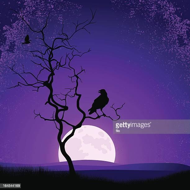 ilustraciones, imágenes clip art, dibujos animados e iconos de stock de espeluznante paisaje - cuervo