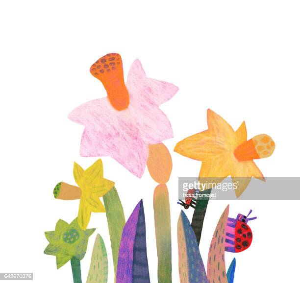 spring flowers daffodils - daffodil stock illustrations, clip art, cartoons, & icons