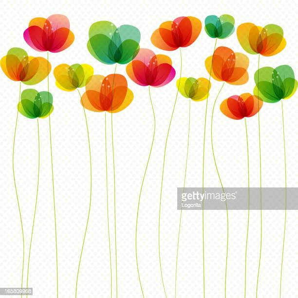 spring flowers (seamless) - single flower stock illustrations