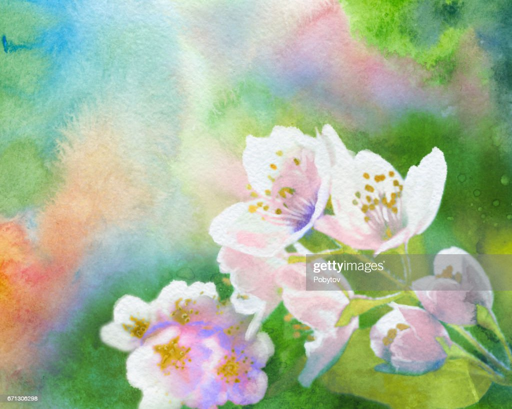 Spring Flowers Watercolor Background High Res Vector Graphic