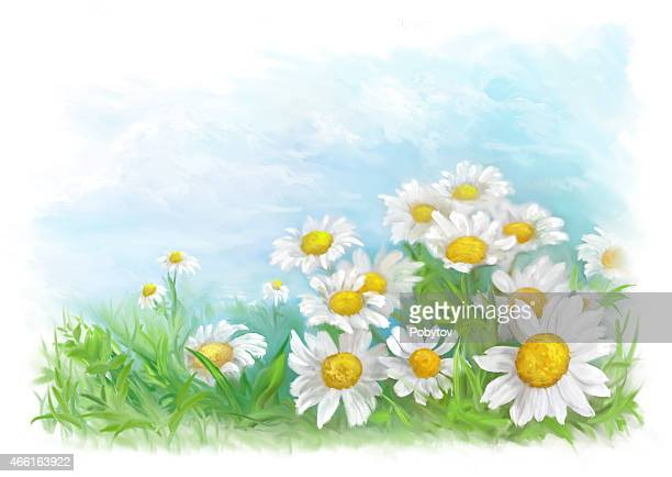 spring painted card - daisy stock illustrations, clip art, cartoons, & icons