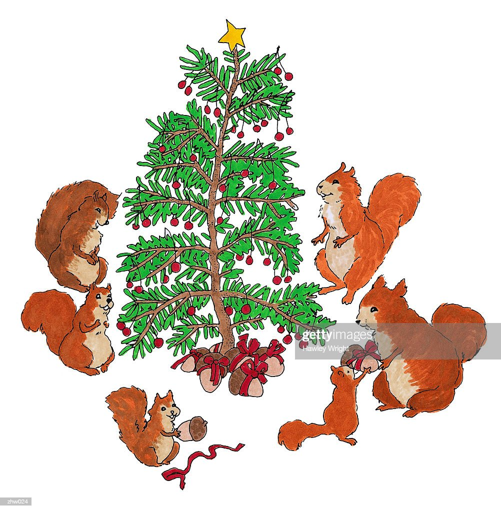 Squirrel Family Christmas : Stock Illustration