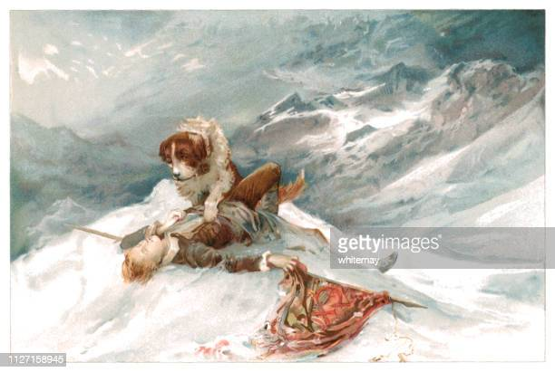 st bernard dog finding a dead or injured mountaineer in the snow - dead dog stock illustrations
