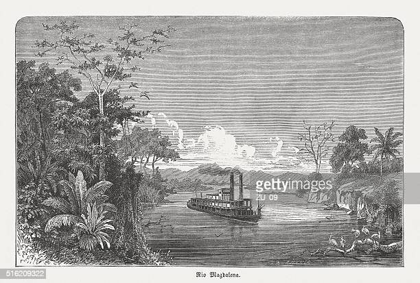 steam ship on the magdalena river, colombia, published in 1873 - colombia stock illustrations