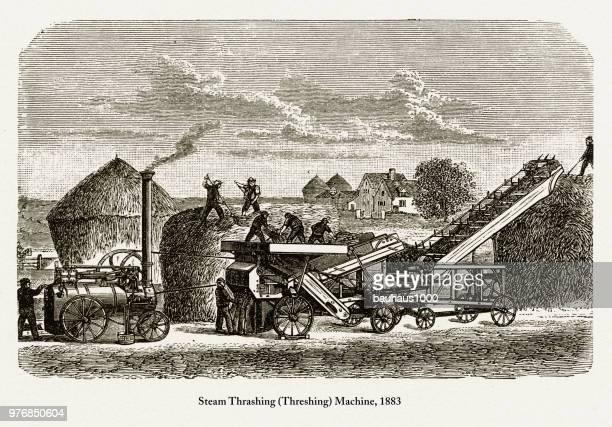 ilustraciones, imágenes clip art, dibujos animados e iconos de stock de vapor golpeando (trilla) máquina, temprano americano grabado, 1883 - revolucion industrial