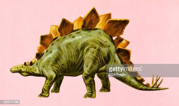 ilustraciones, imágenes clip art, dibujos animados e iconos de stock de estegosaurio dinosaurio - animal extinto