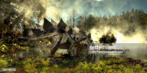 stegosaurus dinosaurs drinking water from a marsh. - scute stock illustrations, clip art, cartoons, & icons