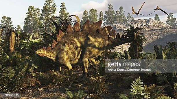 a stegosaurus hanging out. - thyreophora stock illustrations, clip art, cartoons, & icons