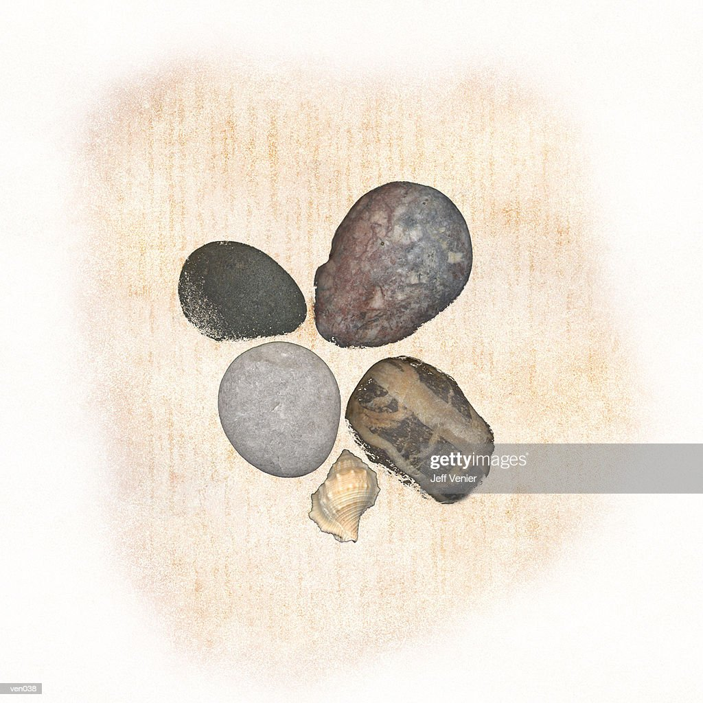 Stones & Shells : stock illustration