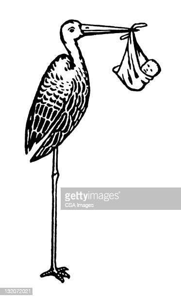 Stork Holding Baby