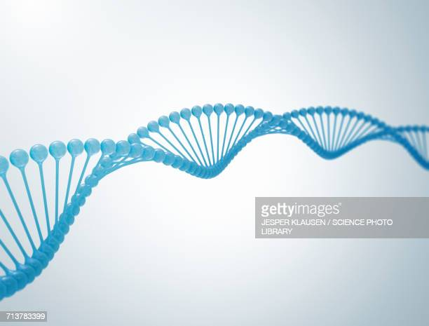 dna strand - dna stock illustrations