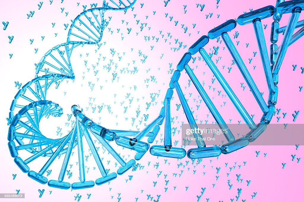 DNA strand made from blue Y Chromosomes : Stock Illustration