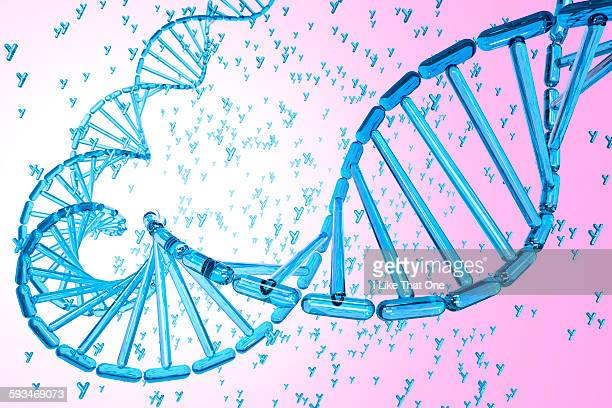 dna strand made from blue y chromosomes - atomic imagery stock illustrations