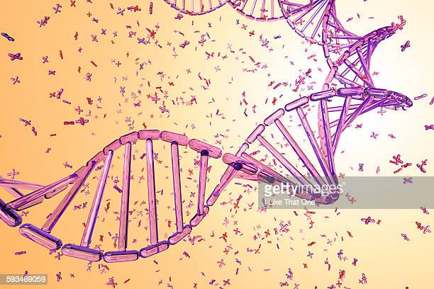 dna strand made from pink x chromosomes - atomic imagery stock illustrations