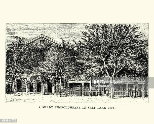 Street in Salt Lake City, 19th Century