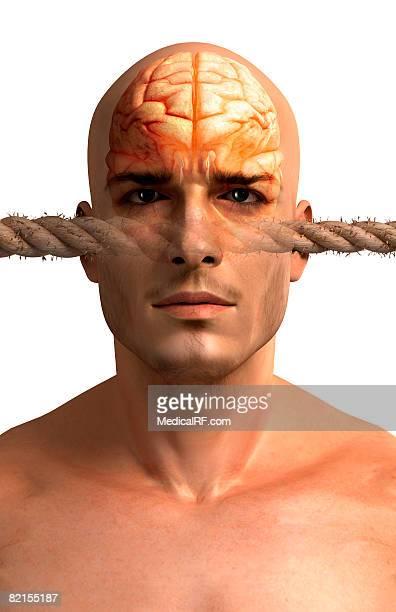 stress - cerebral hemisphere stock illustrations, clip art, cartoons, & icons