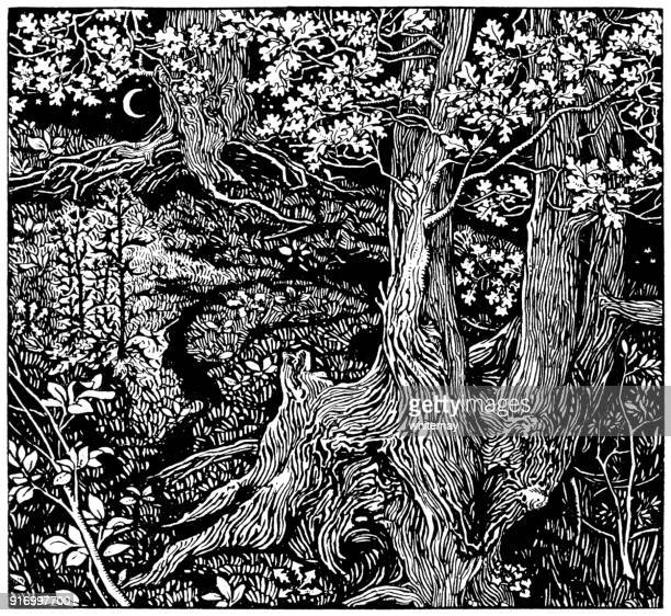 study of trees - mary j. newill - woodcut stock illustrations