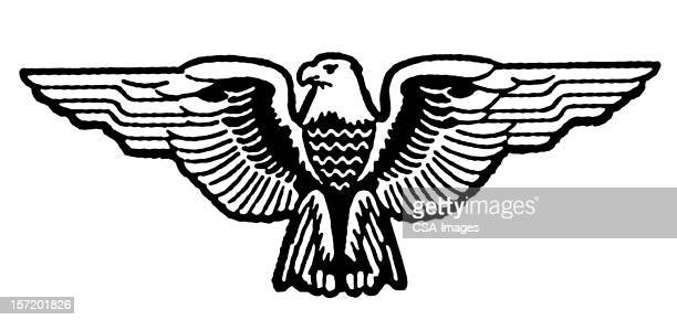 stylized eagle - animal limb stock illustrations, clip art, cartoons, & icons