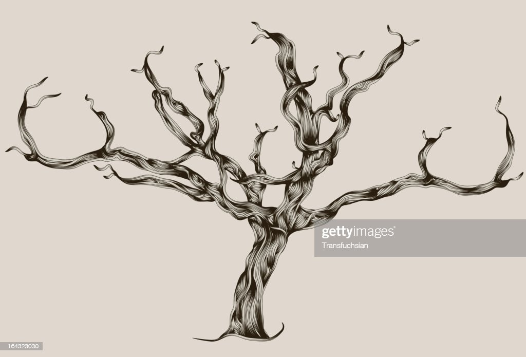 Stylized Illustrated hand drawn dead tree