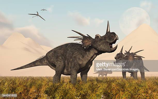 styracosaurus dinosaurs calling out to each other as a sand storm comes to an end. - other stock illustrations, clip art, cartoons, & icons