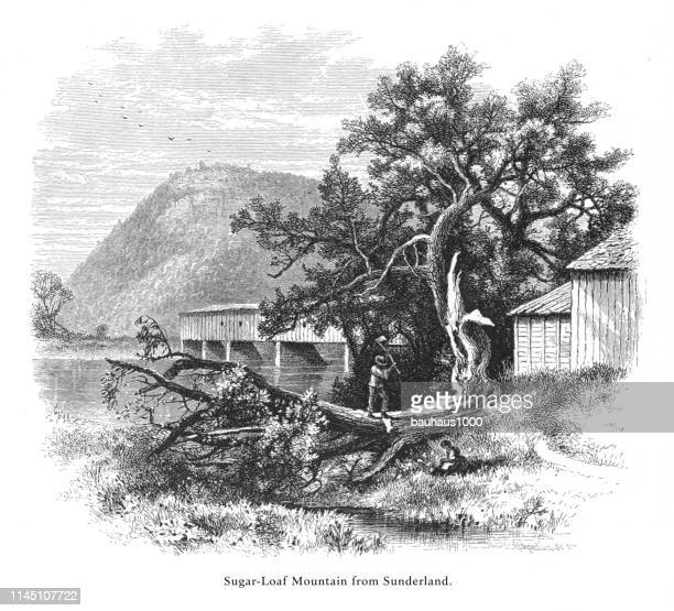 sugarloaf mountain from sunderland, connecticut river, valley of the connecticut, massachusetts, united states, american victorian engraving, 1872 - connecticut river stock illustrations, clip art, cartoons, & icons