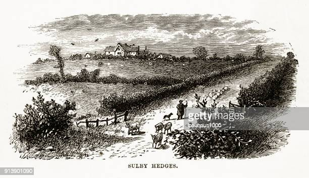 Sulby Hedges in Naseby, England Victorian Engraving, Circa 1840