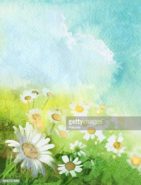 summer art background - daisy stock illustrations