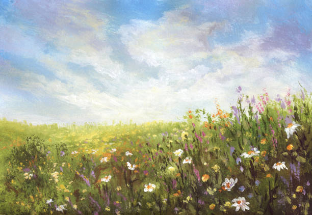 summer meadow, painting - fantasy stock illustrations