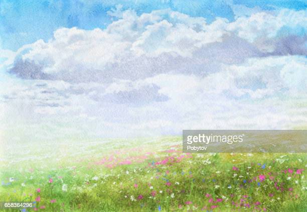 Summer meadow, watercolor painting