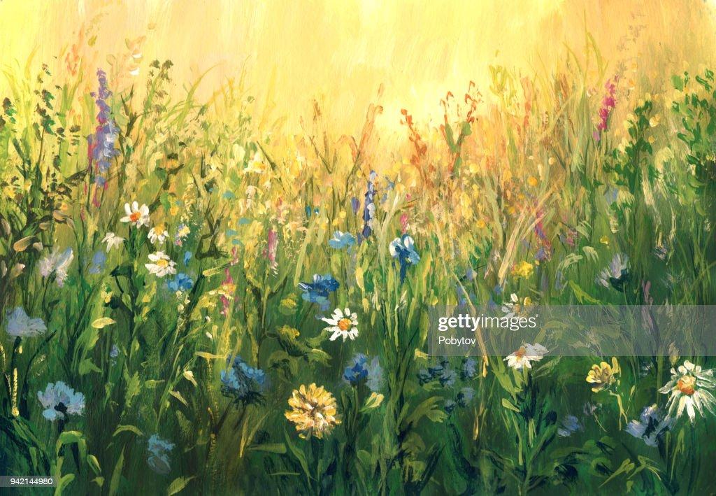 Prado de verão, aguarelas : Ilustração