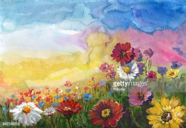 summer meadow, watercolor painting - wildflower stock illustrations, clip art, cartoons, & icons