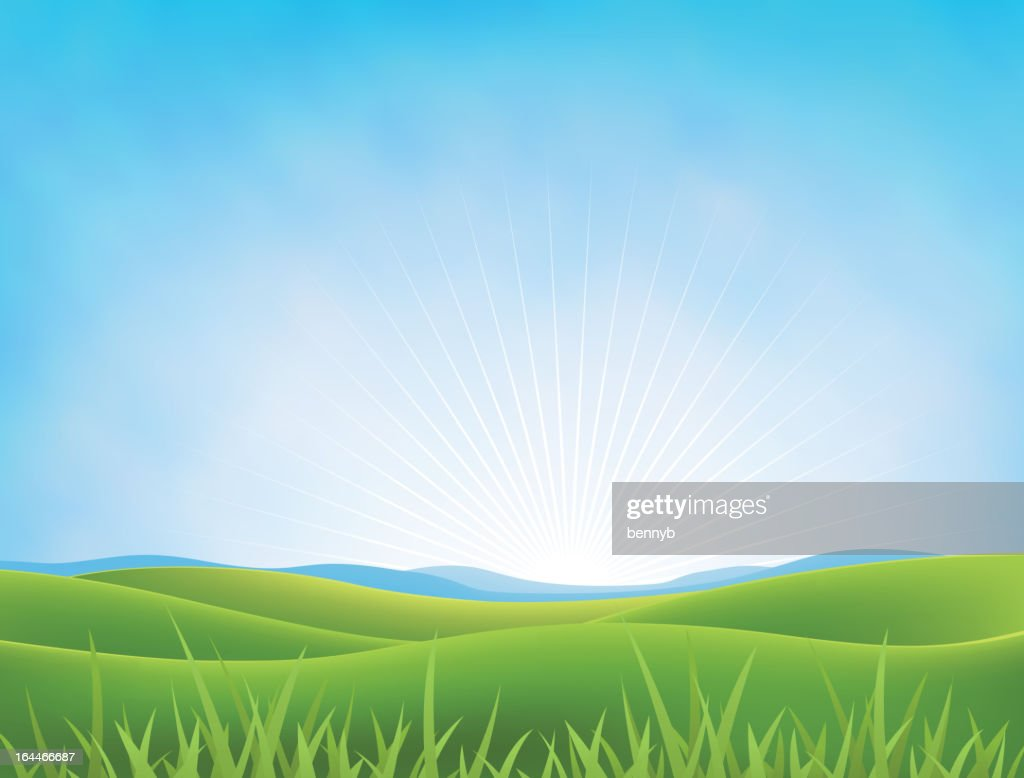Summer Or Spring Meadows Background