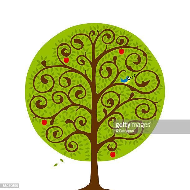 summer tree - mockingbird stock illustrations, clip art, cartoons, & icons