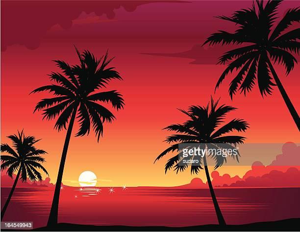 Sunset Illustrationen