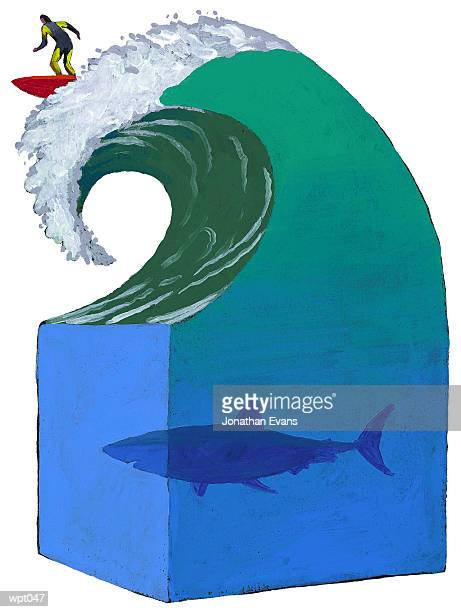 surfing in shark-infested waters - infestation stock illustrations, clip art, cartoons, & icons