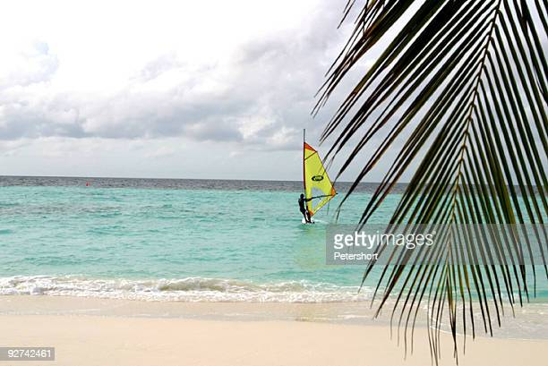 surfing paradise - hawaiian ethnicity stock illustrations, clip art, cartoons, & icons
