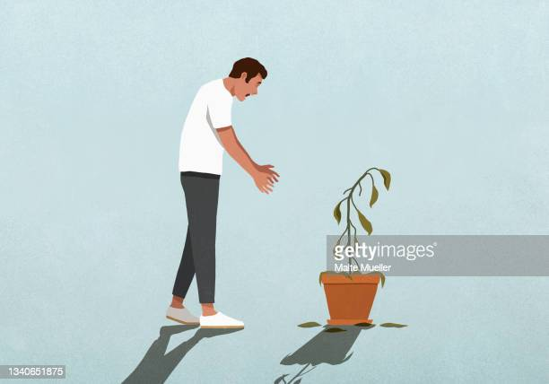 surprised man looking down at dead houseplant - death stock illustrations