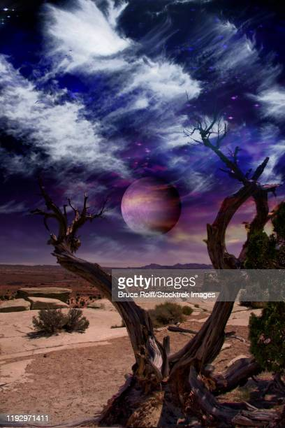 surreal landscape. desert tree and giant moon in the sky. - driftwood stock illustrations