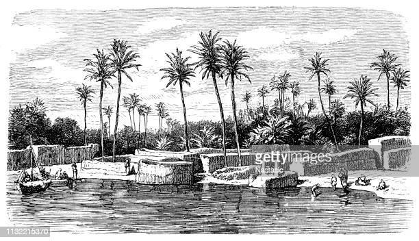 Surroundings of Baghdad