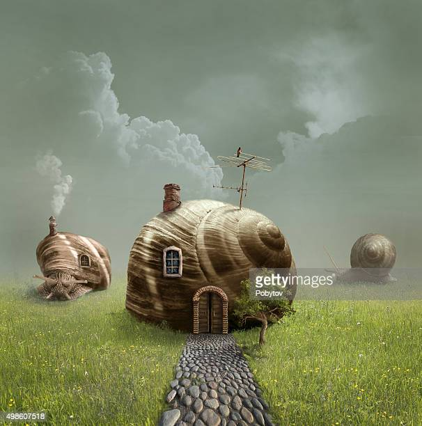 illustrations, cliparts, dessins animés et icônes de sweet home - escargot