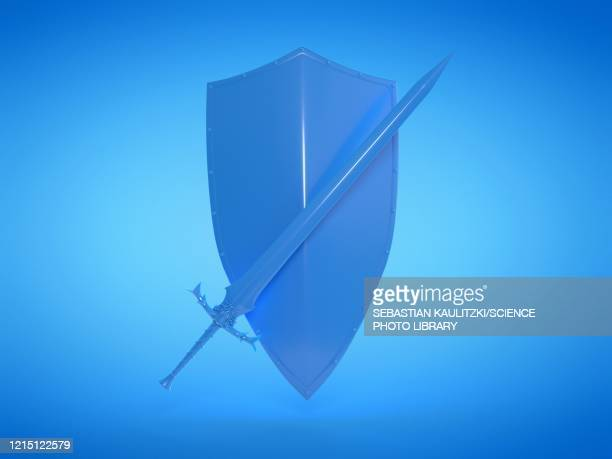 sword and shield, illustration - history stock illustrations