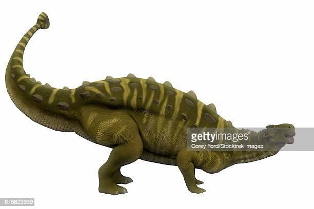 talarurus dinosaur, side profile. - scute stock illustrations, clip art, cartoons, & icons
