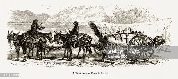 Team of Horses Pulling a Wagon on the French Broad River, North Carolina, United States, American Victorian Engraving, 1872