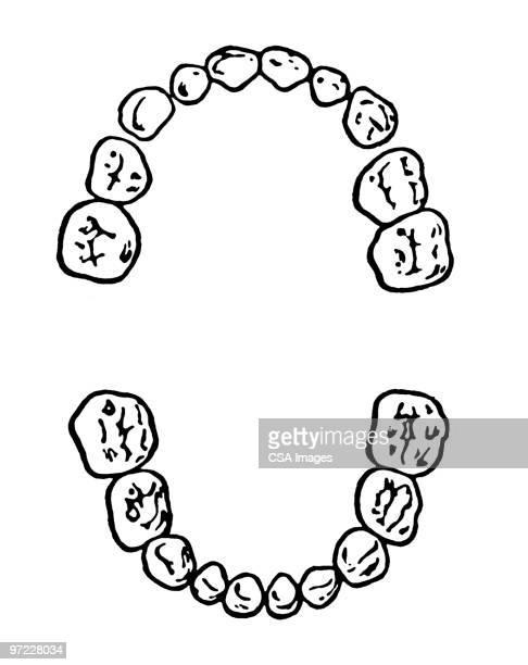 60点のヒトの歯のイラスト素材クリップアート素材マンガ素材
