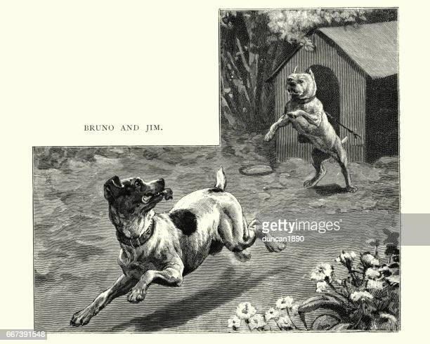 Terrier, siendo perseguido por un perro bulldog, siglo XIX