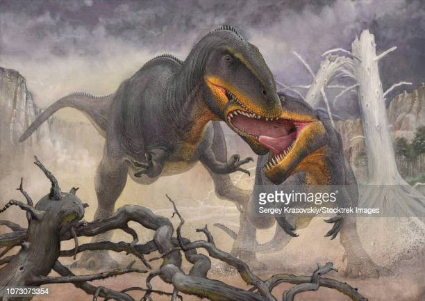 A territorial dispute between a pair of Tyrannotitan male dinosaurs.